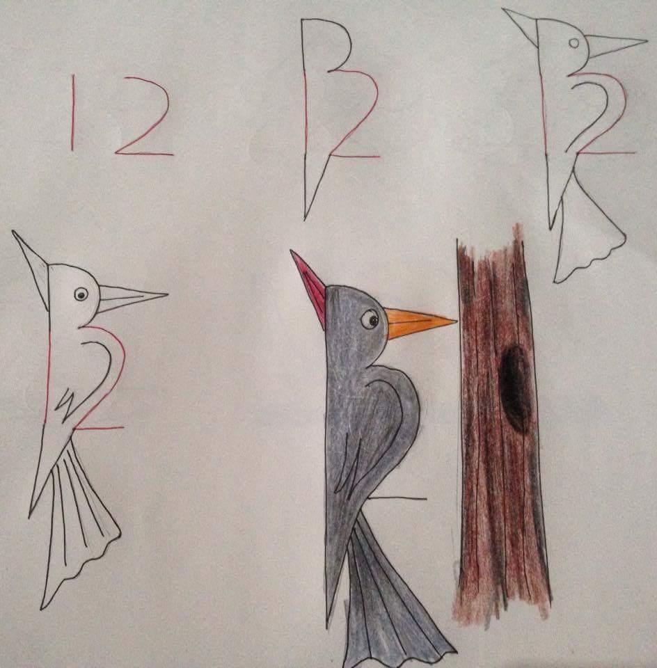 Menggambar Burung Pelatuk